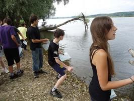 Steineditschen auf der Oder bei Zollbrücken